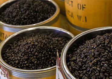 ケイティオー建設 コーヒー事業 豆くらぶ
